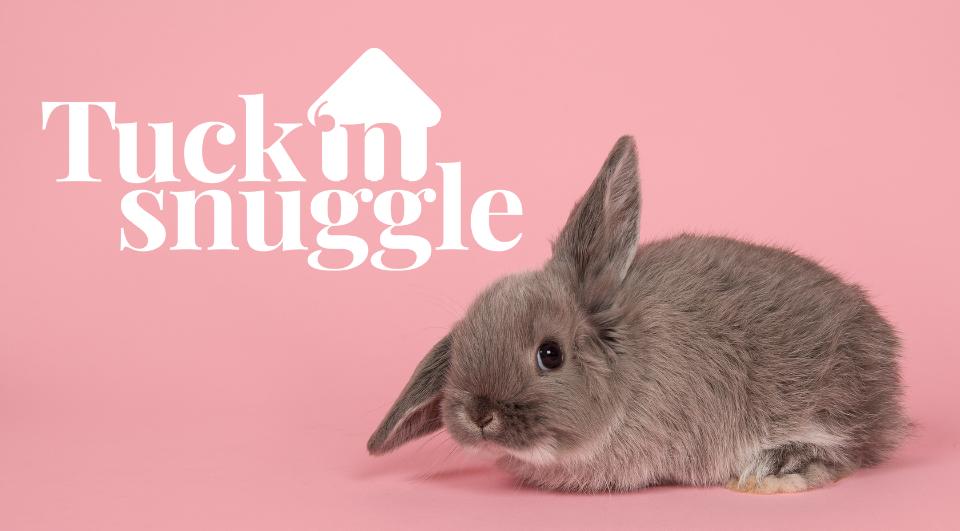 Tuck 'n Snuggle header
